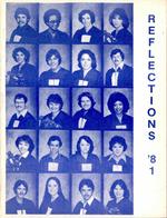 1981 Kingstec